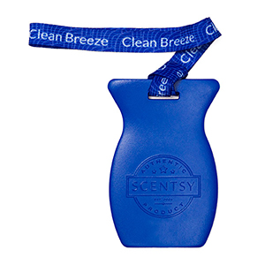 Clean breeze Scentsy car bar